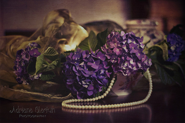 photo-profile-adriana-glackin-02